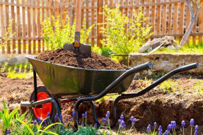 puesto-a-punto-de-jardines-en-mallorca